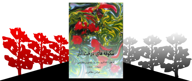 mazaheri_book_color