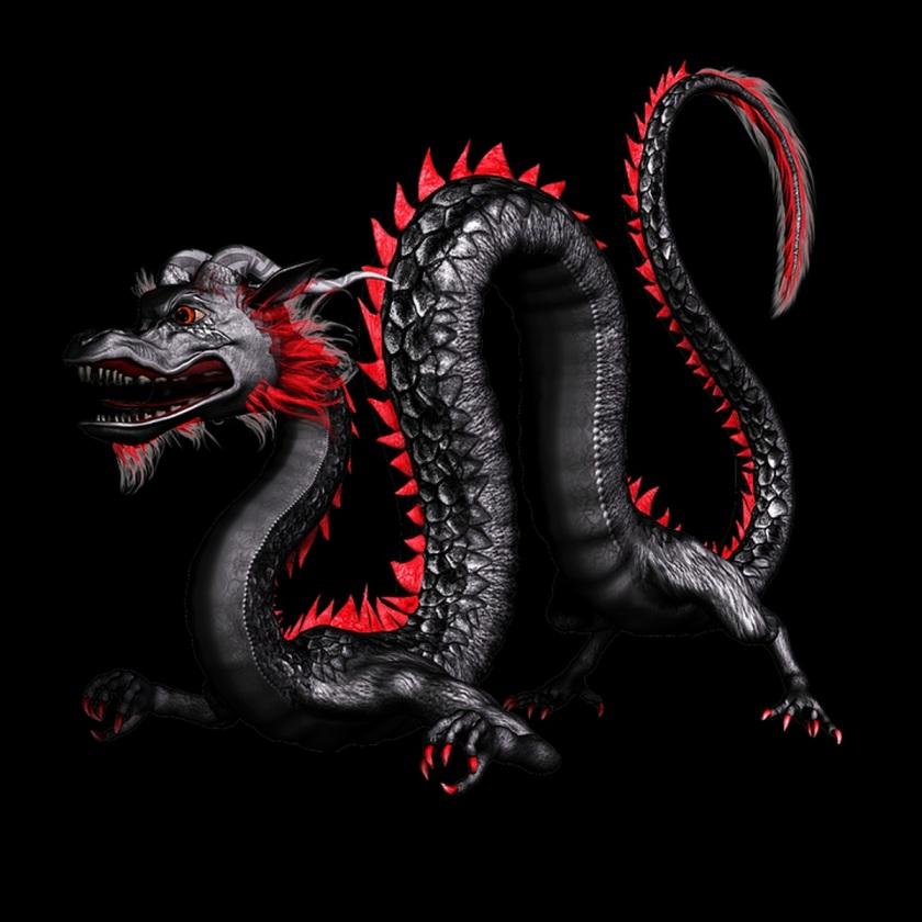 dragon-1969052_960_720