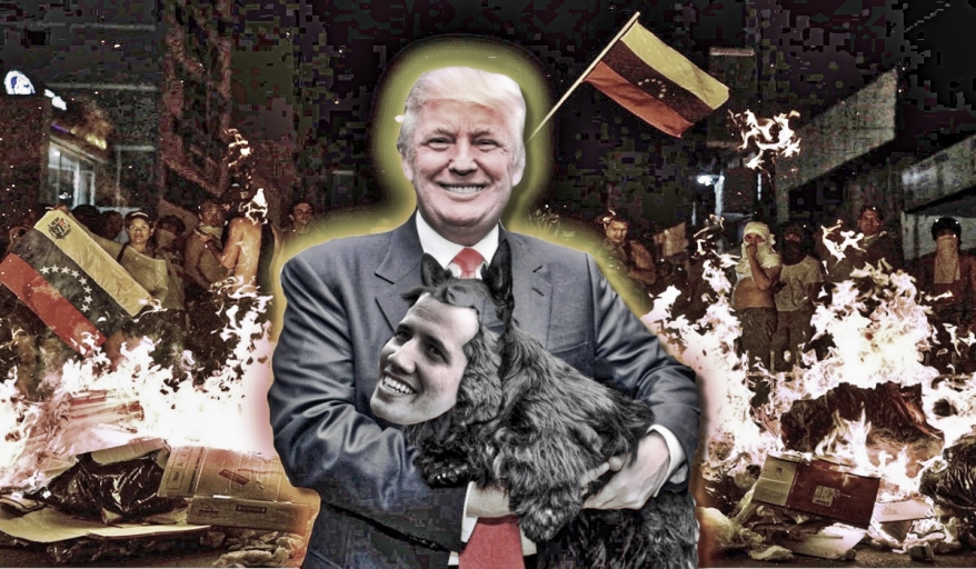 usa_dog_venezuela_col1